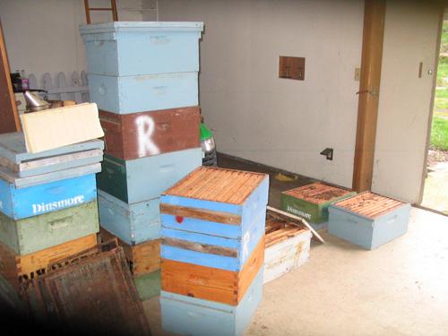 Beekeeping Hives